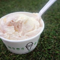 Fromage Blanc Strawberry Swirl Frozen Custard from Shake Shack