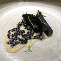 Salsify Cooked in squid ink, caviar sauce, elderflower butter sauce