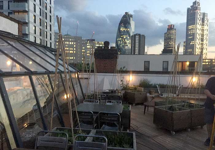 The Culpeper To Open Rooftop Greenhouse Grill And Bar In