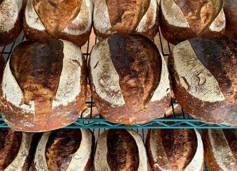 Rye by the Water returns to Brentford - and Darby's is delivering