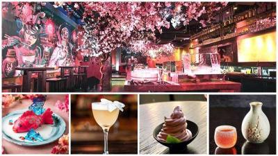 Where to celebrate Cherry Blossom season, Sakura, in London