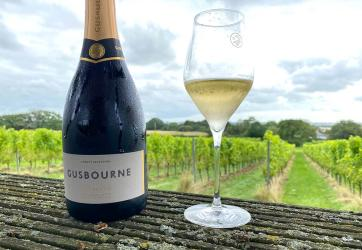 Wine tasting in the garden of England: Taking the Estate Tour at Gusbourne