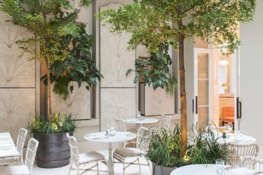 Skye Gyngell to open Salon at Spring in Somerset House