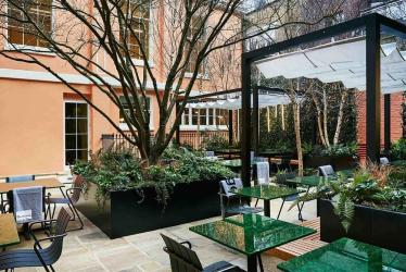 Native returns to London - opening at Browns along with a courtyard alfresco option