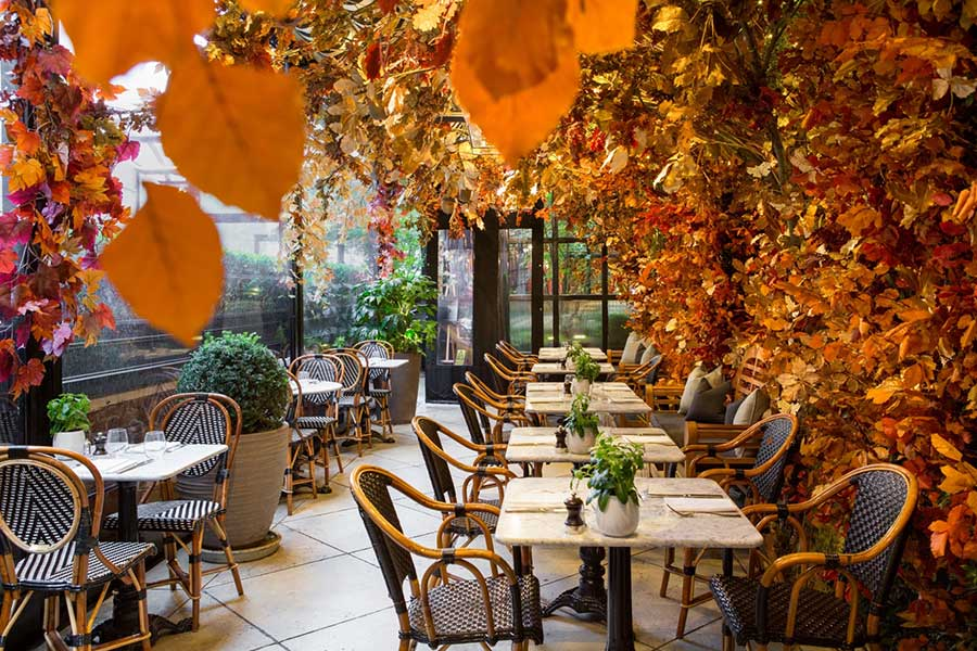 dalloway terrace debuts autumn look