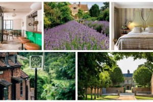 The UK's best countryside hotels for foodies
